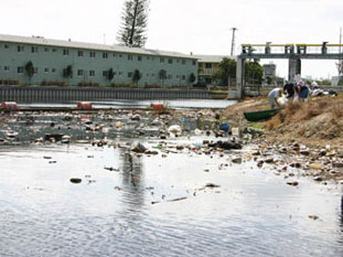 Discarded trash makes its way to our bays and oceans with storm water runoff.