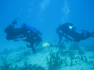Jamie Monty and Joanna Walczak using the FRRP Cold Water DRM protocol to monitor coral reefs in Miami-Dade County. Photo: Christopher Boykin, FDEP CRCP