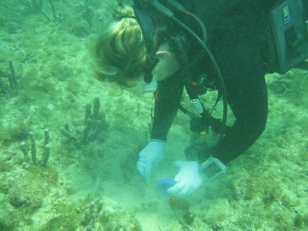 Patricia Rose collecting sediment samples. Photo: Katharine Tzadik, FDEP CRCP