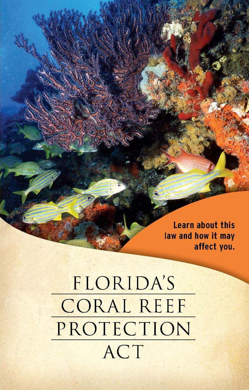 Florida's Coral Reef Protection Act – Learn about this law and how it may affect you