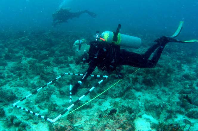 Divers sample the recovery of an area of reef previously injured from a boat grounding. Photo: Dave Gilliam Ph.D.,Nova Southeastern University Oceanographic Center