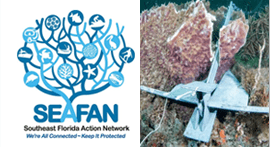 SEAFAN: Southeast Florida Action Network