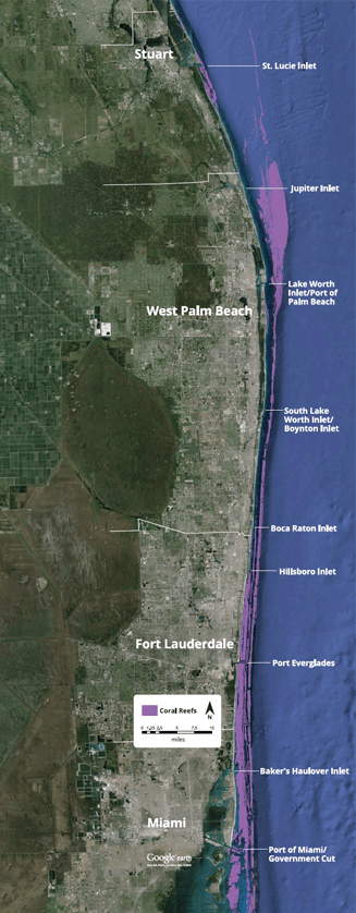 Map Of Southeast Florida Beaches.Home South East Florida Reefs